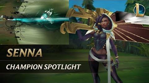 Senna Champion Spotlight