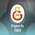 Galatasaray Esports 2017 profileicon.png