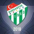 Bursaspor Esports 2018 profileicon.png