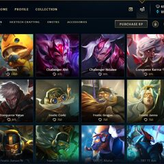 Skins store page <small>(Patch <a href=