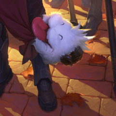 Affectionate Poro
