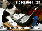 Demise101 Moderator Kitty