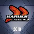 KaBuM! e-Sports 2018 profileicon.png
