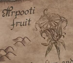 Nirpooti Fruit