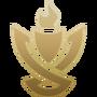 Clash Crest icon