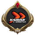 MSI 2018 KaBuM! e-Sports Emote.png