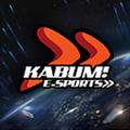 Worlds 2014 KaBuM! e-Sports profileicon.png