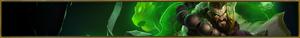 SG Udyr Turtle Profile Banner