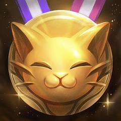 Złoty Kot