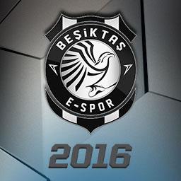 File:Beşiktaş e-Sports Club 2016 (Alt) profileicon.png