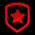 Worlds 2013 Gambit Gaming profileicon.png