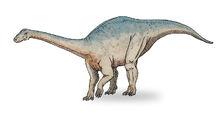 1200px-Riojasaurus sketch3