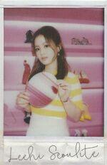 Seoulite Polaroid 2