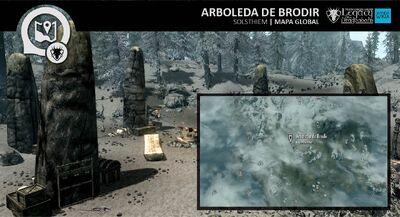 MP Arboleda de Brodir