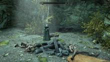 The Elder Scrolls V Skyrim Special Edition Screenshot 2020.09.09 - 20.58.19.02