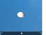 Scallop Shell - Rough
