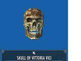 Skull of Vittoria Vici