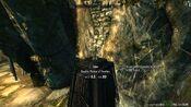 Akaviri Dragon Gold Piece Under Potion