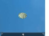 Scallop Shell - Green and White
