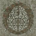 SR1-Texture-Necropolis-ForceGlyphBrain.png