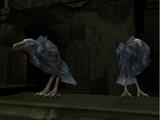 Vorador's crows