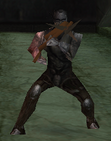 Vamp-hunter2