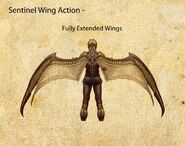 Nosgoth-Character-Sentinel-WingActionDetails-Left