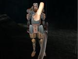 Demon hunters (swordsmen)