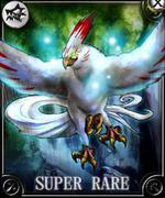 Paradise Bird