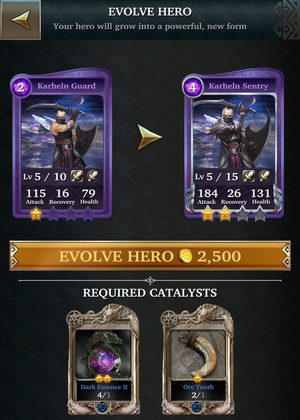 24 - evolution