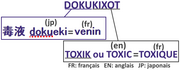 Origine du nom Dokukixot