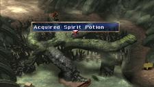 Spirit Potion Chest Marshlands