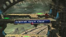 Spirit Cloak Chest