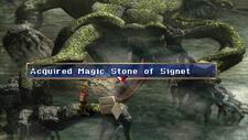 Magic Stone of The Signet Chest Marshlands