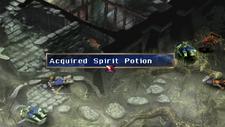 Spirit Potion Chest 2 Marshlands