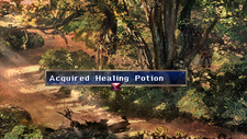Healing Potion Chest Forest