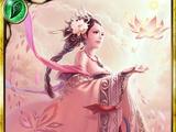Sakuya of Shangri-la