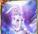 Wondersky White Rabbit