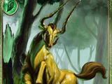 Sonnelis Forest