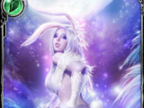 (Fastidious) Wondersky White Rabbit