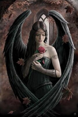 Alana of the Raven