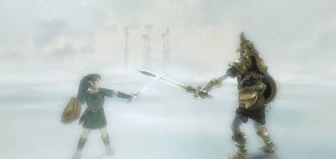 TP Hero's Spirit & Link