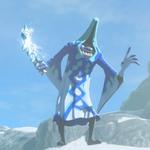 BotW Hyrule Compendium Blizzrobe