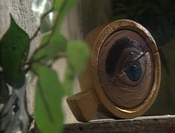 Bifocal Monocle of One-Eyed Jack