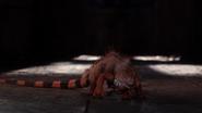 Orange Iguana in the TV Movie