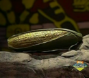 The Dried Ear of Corn of Sojourner Truth