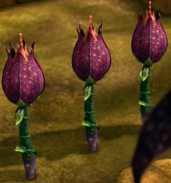 Persuasive Plant