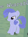 BlueBell the wearable items mare.png