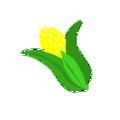 Cutie corn.png