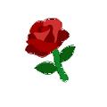 Cutie rose1.png